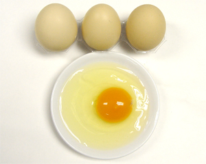 万博体育app登录散养柴鸡蛋(45枚装)