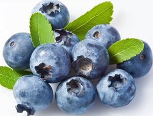 进口蓝莓12盒1箱