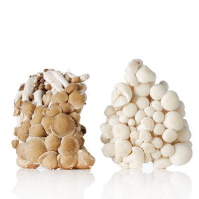 鲜蟹味菇黑白组合 300g/盒