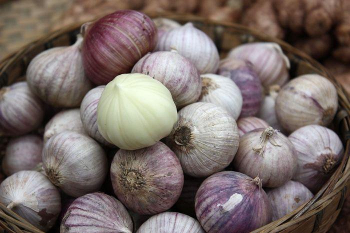 万博体育app登录独头蒜-独头紫皮大蒜