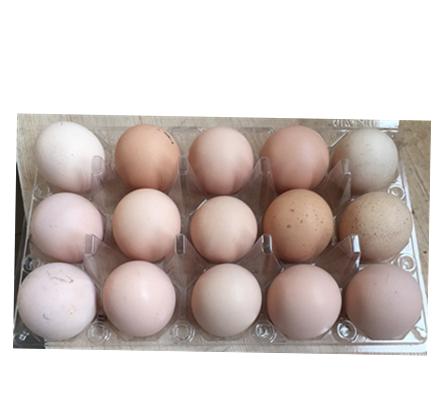 万博体育app登录散养柴鸡蛋(15枚装)