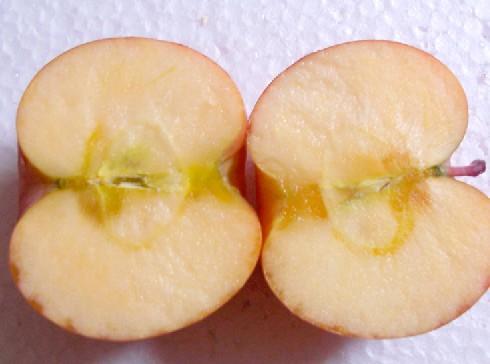 新疆阿克苏苹果(约5-6kg)/箱