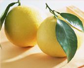 葡萄柚2个(约4-5kg)