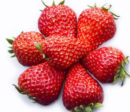 万博manbetx官网app红颜草莓